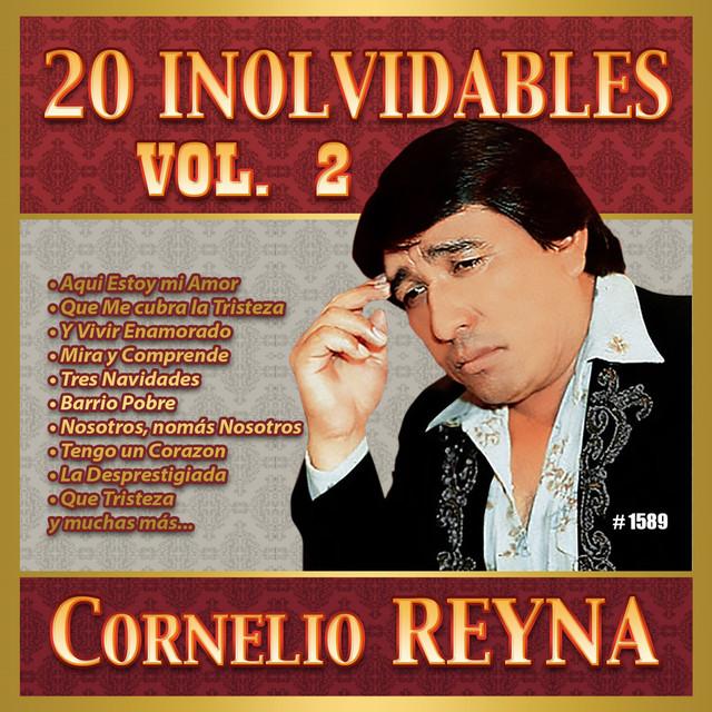 20 Inolvidables, Vol. 2