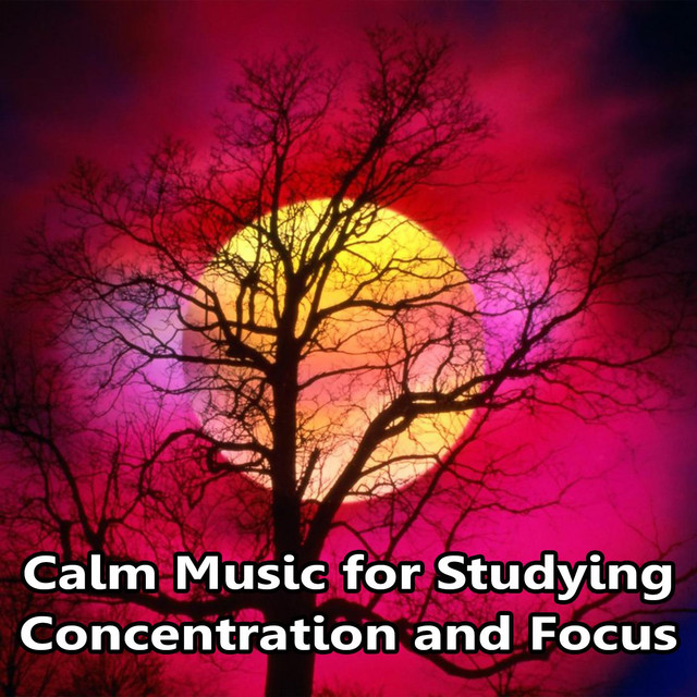 Calm Music for Studying, Concentration and Focus by