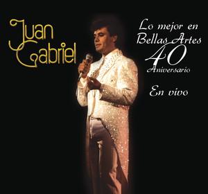 Lo Mejor en Bellas Artes - 40 Aniversario Albumcover