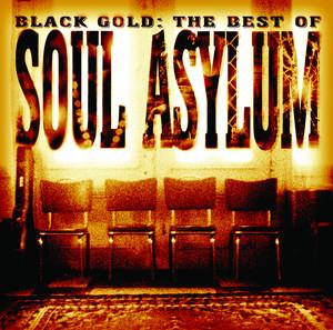 Black Gold: The Best Of Soul Asylum Albumcover