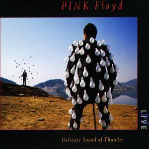 Delicate Sound of Thunder album