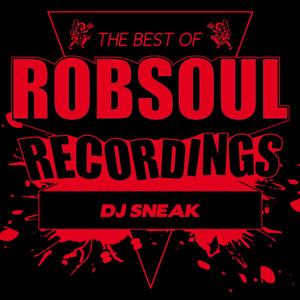 Best of DJ Sneak album