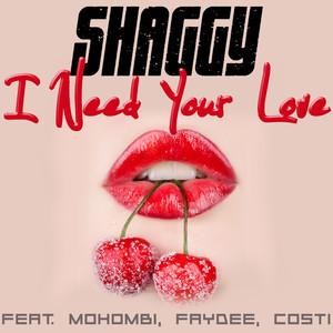 I Need Your Love - Shaggy
