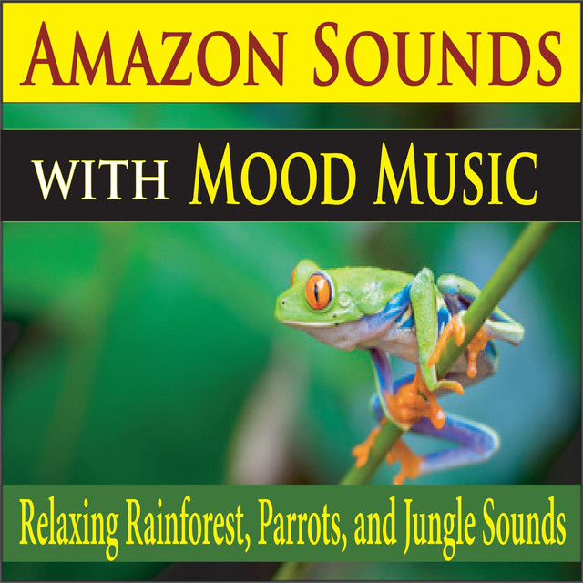 Amazon Sounds with Mood Music (Relaxing Rainforest, Parrots