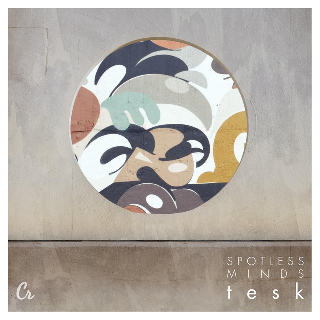 Album cover for Spotless Minds by Tesk
