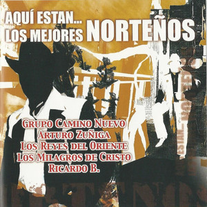 Aqui Estan los Mejores Nortenos Albumcover