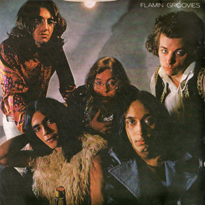 Flamin' Groovies Shake Some Action cover
