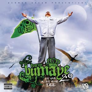Freezy Bumaye 2.0 - Es War Alles Meine Idee album