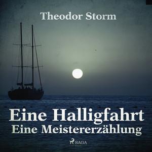 Eine Halligfahrt - Eine Meistererzählung (Ungekürzt) Audiobook