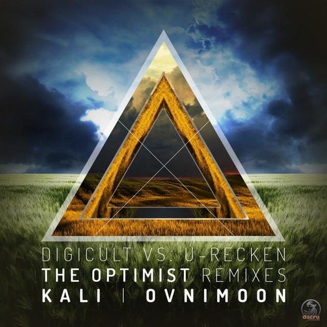 The Optimist Remixes