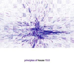 Principles of House, Vol. 15 album