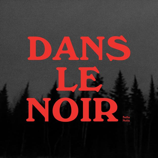 Album cover for Dans le noir by Safia Nolin
