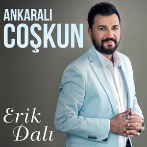 Erik Dalı Albümü