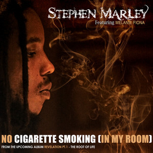 Stephen Marley No Cigarette Smoking (In My Room) cover