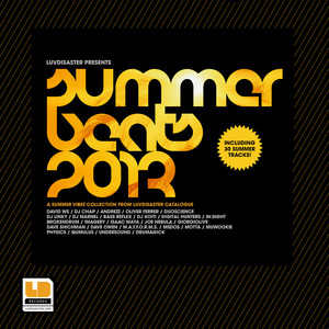 Summer Beats 2013 album