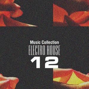 Music Collection. Electro House 12 Albumcover