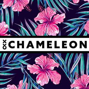 Chameleon Albümü