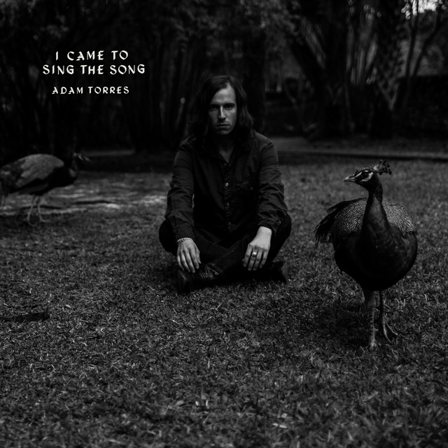 Album cover for I Came to Sing the Song by Adam Torres