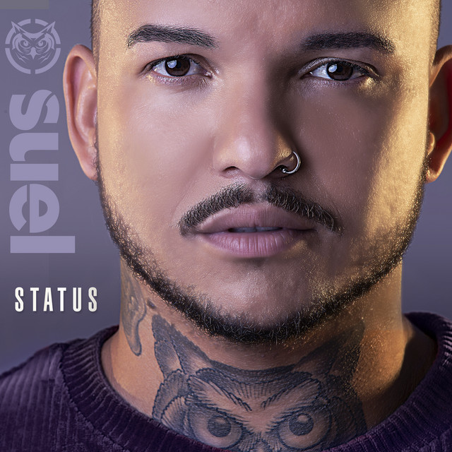 Album cover for Status by Suel