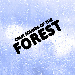 Calm Sounds of the Forest Albumcover