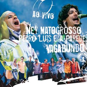 Ney Matogrosso, Pedro Luís e a parede Sangue Latino cover