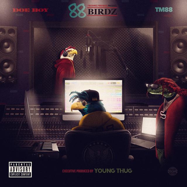 88 Birdz