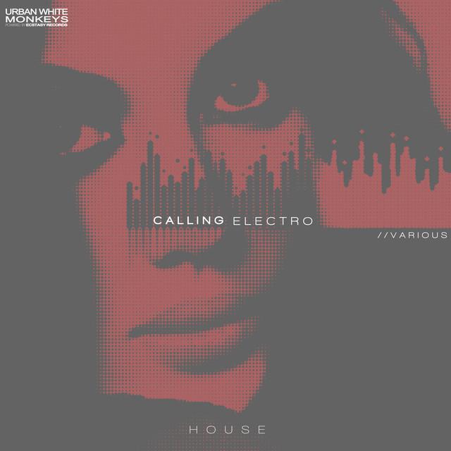 Calling Electro House Albumcover