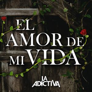 El Amor De Mi Vida Albümü