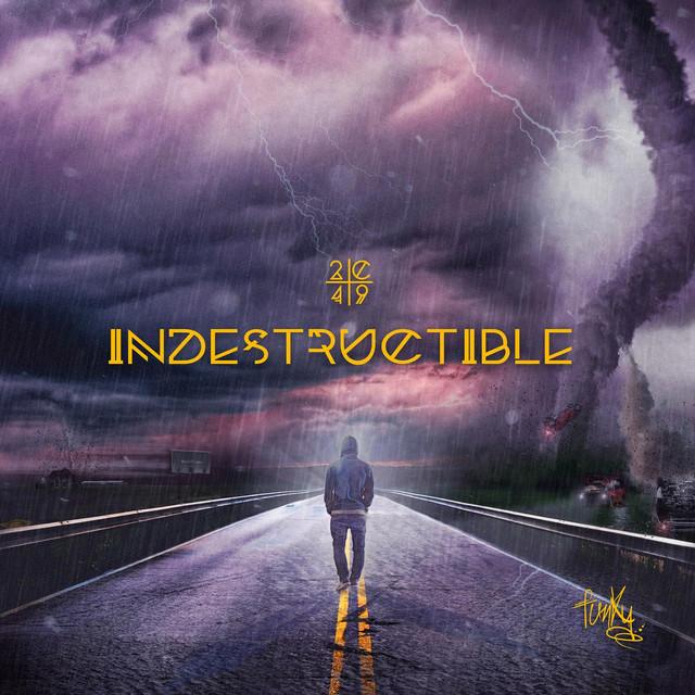 Indestructible Albumcover