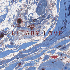 Lullaby Love (Single Version) Albümü