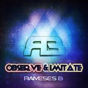 Observe & Imitate Albumcover