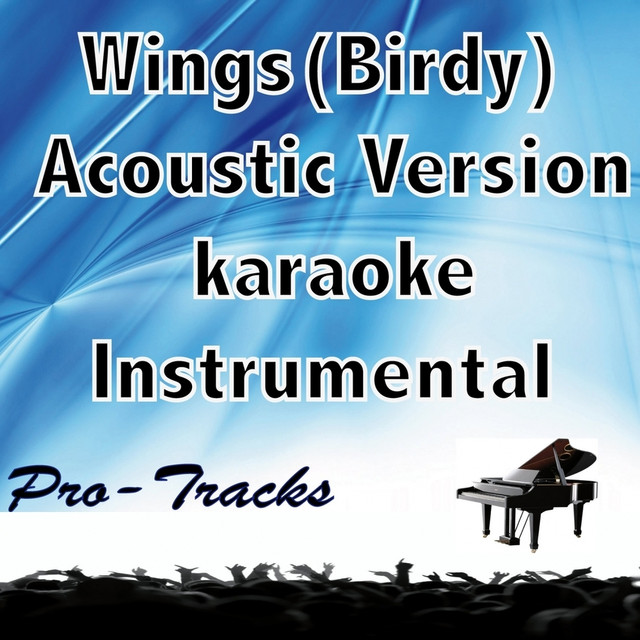 Wings acoustic (karaoke instrumental) [in the style of Birdy