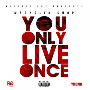 Y.O.L.O. (You Only Live Once)