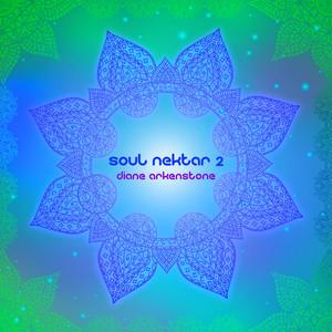 Soul Nektar 2