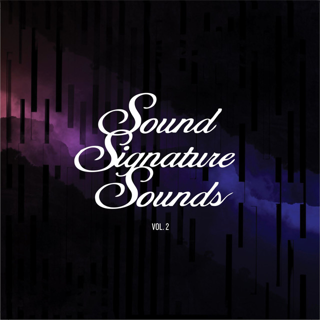 Sound Signature Sounds, Vol. 2