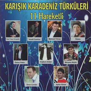Karışık Karadeniz Türküleri Hareketli 11 Albümü