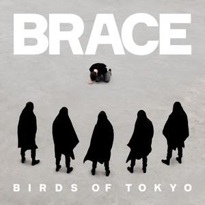 Birds of Tokyo Brace cover