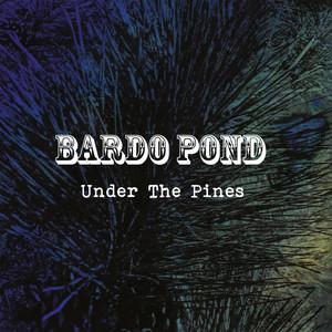 Under the Pines album