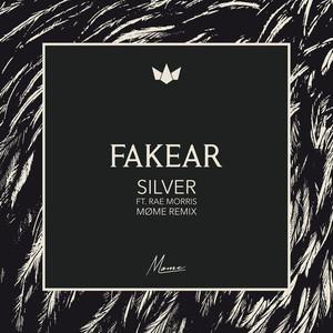 Silver (Møme Remix) Albümü