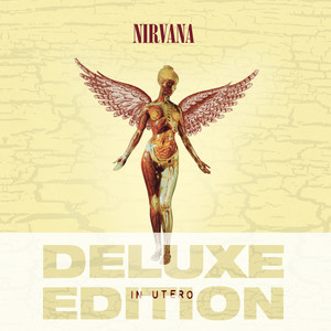 In Utero - 20th Anniversary - Deluxe Edition Albumcover