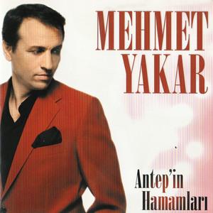 Antep'in Hamamları Albümü