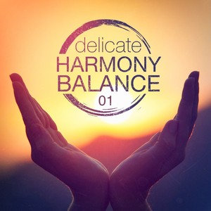 Delicate Harmony Balance, Vol. 1 Albumcover
