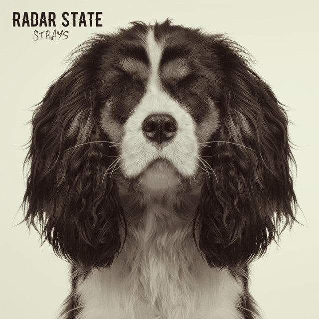Album cover for Strays by Radar State