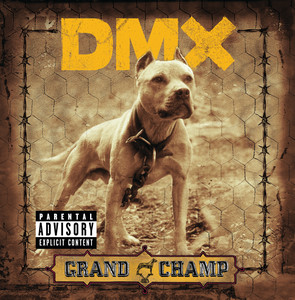 DMX  Sheek Louch, Syleena Johnson, Infa-Red, Infa-Red & Cross, Drag‐On Untouchable  cover