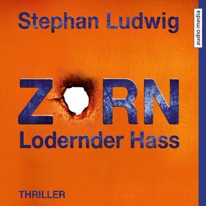 Zorn 7 - Lodernder Hass Audiobook