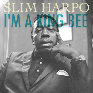 Slim Harpo Rainin' in My Heart cover