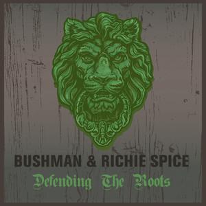 Bushman & Richie Spice Defending the Roots album