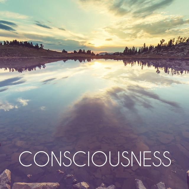 Conciousness Albumcover