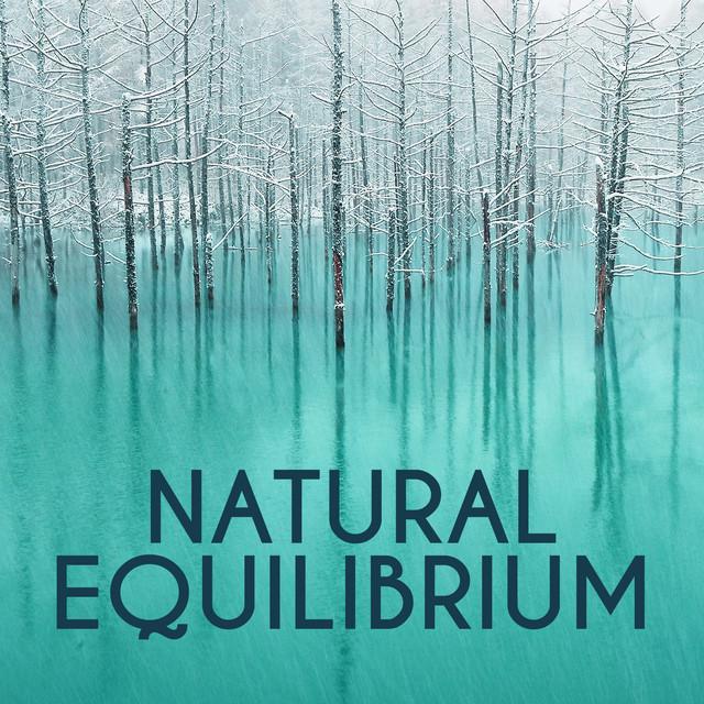 Natural Equilibrium Albumcover