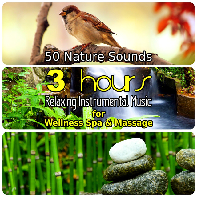 50 Nature Sounds: 3 Hours Relaxing Music for Welness Spa and Massage
